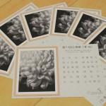 2015年4月18日(土)~26日(日) ぎゃらりーKnulpにて「華-花展」が開催 とくとみの写真も展示されます 18日(土)にはギャラリートークも開催!