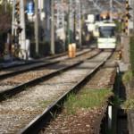 【Tokyo Train Story】線路敷きの草(都電荒川線)