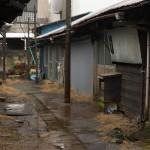 今週の365 DAYS OF TOKYO(5月18日~5月24日) ~ 荒川区内の路地特集