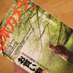 日本カメラ2015年6月号の「町猫を撮る」という企画でとくとみが書いた記事が掲載されました!