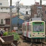 【Tokyo Train Story】バラの季節の三ノ輪橋電停にて(都電荒川線)