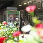 【Tokyo Train Story】バラに囲まれた大塚駅前電停(都電荒川線)