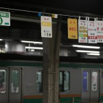【Tokyo Train Story】特急列車の乗車案内(上野駅にて)