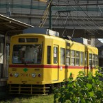 【Tokyo Train Story】西陽が当たる黄色い都電荒川線