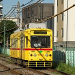 【Tokyo Train Story】黄色い列車が街を走る(都電荒川線)