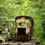 木曽の森の中をゆっくりのんびり走る赤沢森林鉄道に乗車してみた 『夏の長野旅2015』 その22