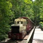 美しい森の中を走る赤沢森林鉄道を撮り鉄三昧! 『夏の長野旅2015』 その23