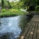 夏でも涼しい!静岡県三島市にある美しい水が流れる源兵衛川の水上遊歩道を歩いてみた 『夏の青春18きっぷの旅2015 三島編』 その3