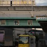 【Tokyo Train Story】夕暮れ時の都電荒川線と日暮里・舎人ライナーの立体交差