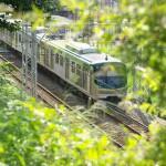 【Tokyo Train Story】緑の中を走る東急池上線