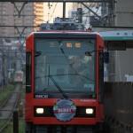 【Tokyo Train Story】都電の新型車両8900形を正面からドーンと撮る