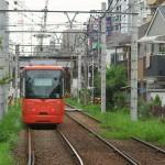 【Tokyo Train Story】線路際に緑がある季節(都電荒川線)