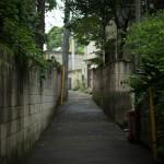 今週の365 DAYS OF TOKYO(11月16日~11月22日) ~ 谷中と日暮里の秋の訪れ