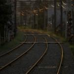 【Tokyo Train Story】西日が当たる都電荒川線の線路