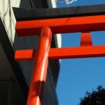 今週の365 DAYS OF TOKYO(12月7日~12月13日) ~ 青空がある谷中の秋景色