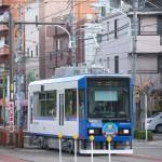 【Tokyo Train Story】都電荒川線の新型車両8900形が導入されて、車両のバリエーションが増えました