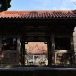 椿の花咲く神津島の物忌奈命神社で初詣をしてみた 『 #tokyo島旅山旅 で神津島に行こう!』 その5