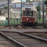 【Tokyo Train Story】カーブを曲がって姿を現す都電荒川線のレトロ風車両