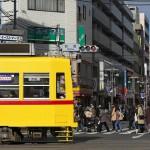 【Tokyo Train Story】尾竹橋通りを渡る都電荒川線と人々