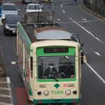【Tokyo Train Story】都電荒川線のすぐ後ろの車がいる風景
