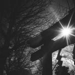 【フィルムカメラ】RICOH GR1sで日暮里、谷中の町並みを撮影してみた