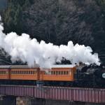 大井川に架かる鉄橋を渡る煙モクモクなSLの勇姿を撮影してみた 『大井川鉄道SL三昧の旅』 その7