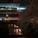【Tokyo Train Story】目黒側の夜桜を愛でながら(東急東横線)