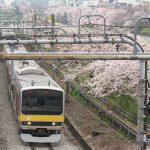 【Tokyo Train Story】外濠のどこまでも続く桜(総武線)