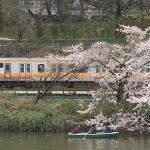 【Tokyo Train Story】最高の花見と鉄見のスポットがここ!(中央線)