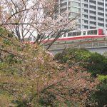 【Tokyo Train Story】旧芝離宮恩賜庭園から東京モノレールを望む