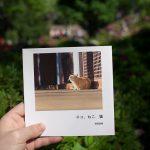 とくとみが撮影したネコ写真だらけのフォトブックをぎゃらりーKnulpでのねこ展で販売中 早い者勝ちですよ!