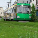 【Tokyo Train Story】緑の季節(東急世田谷線)