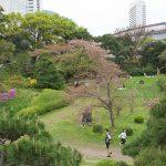 【Tokyo Train Story】春の庭園にて(東京モノレール)