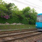 【Tokyo Train Story】緑と赤と青が出会う場所(東急世田谷線)