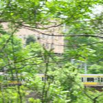 【Tokyo Train Story】緑の中を駆け抜ける総武線