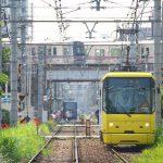 【Tokyo Train Story】たくさんの電車を一度に見られる場所(都電荒川線)