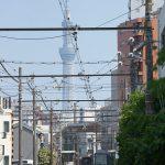 【Tokyo Train Story】東京スカイツリーと都電荒川線の新型車両8900形
