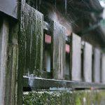 【フィルムカメラ】雨の高田馬場路地裏散歩 Nikon FM2で撮る梅雨の景色