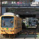 【Tokyo Train Story】黄色い都電荒川線の勇姿