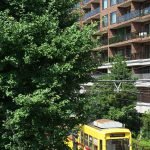 【Tokyo Train Story】夏の緑の中を走る黄色い都電荒川線