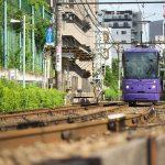 【Tokyo Train Story】夏の日差しの中の紫の都電荒川線