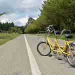 栃木県にある千本松牧場の森の中をレンタサイクルで走るのが最高に気持ちがいい!その後のソフトクリームも忘れずに! #地域ブログ