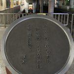 【Tokyo Train Story】上野駅地平ホームにいる特急型車両
