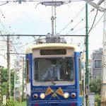 【Tokyo Train Story】ピッカピカな青い都電荒川線7700形の正面顔