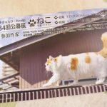 平成28年(2016年)11月12日(土)~20日(日) 文京区千駄木にあるぎゃらりーKnulpで「ねこ展」開催 とくとみの写真も展示されます! #地域ブログ