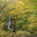 神戸岩、払沢の滝、ヴィッラ・デルピーノのイタリア料理、築約130年のこむかい山荘など東京都檜原村にはこんなに魅力が詰まっている!(旅の初日まとめ)【PR】 #tokyoreporter #tamashima #tokyo #hinohara #Reviews_PR