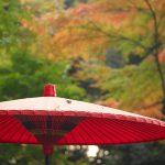 東京23区内でも紅葉がたっぷりと楽しめる文京区本駒込にある六義園に行こう! #地域ブログ