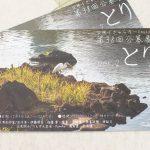 平成29年(2017年)2月4日(土)から12日(日)まで文京区千駄木にあるぎゃらりーKnulpで「とり vol.2」展が開催!とくとみの写真も展示されます #地域ブログ