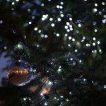 チェコのプルゼニュでクリスマスマーケットに行ってみた!夕方から夜にかけての雰囲気が最高! #link_cz #visitCzech #チェコへ行こう