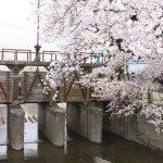 埼玉県川越市に残る昭和13年(1938年)に作られた木製の堰がある田谷橋(田谷堰) #地域ブログ